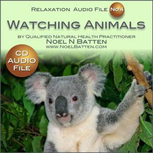Watching Animals Do Their Thing MP3 Audio File-0