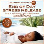End Of Day Stress Release MP3 Audio File-0