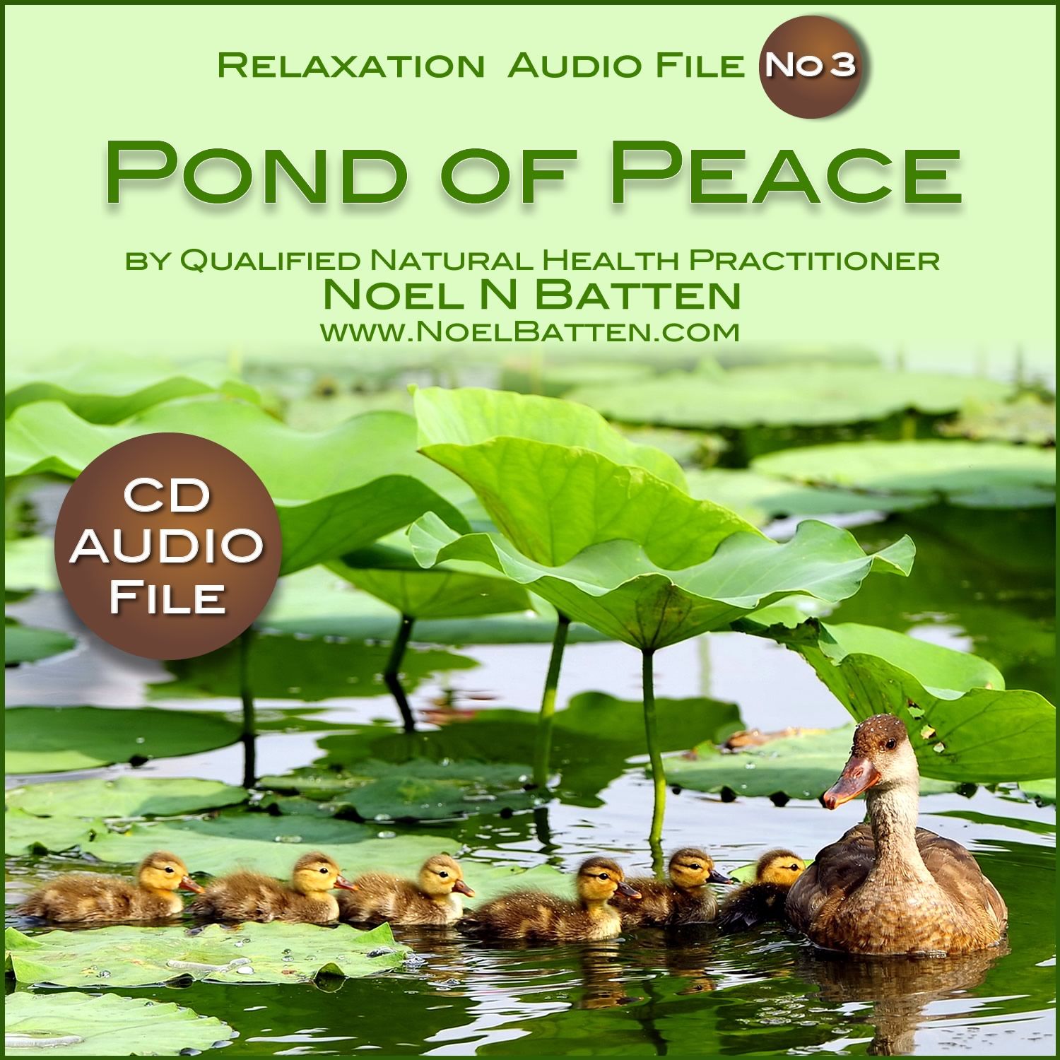 The Pond Of Peace MP3 Audio File-0
