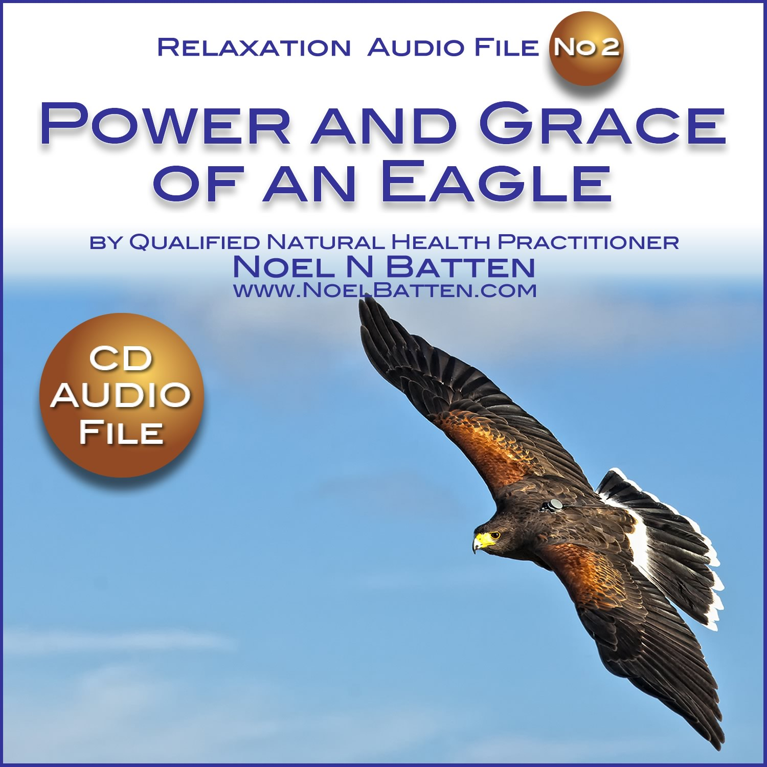 The Power and Grace Of An Eagle MP3 Audio File-0