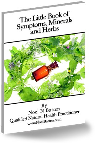 The Little Book of Symptoms, Minerals and Herbs eBook-0
